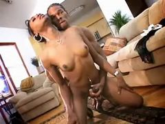 Hot black guy assfucks ebony tranny